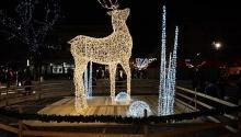 Töltse a Karácsonyt a Science-ben Science Hotel Szeged