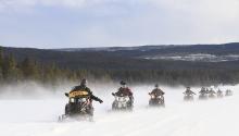 Téli élmény - hószánozzon velünk Mountain RestPanzió