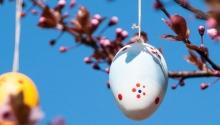 Húsvéti vendégség a kastélyban Főnix Medical Wellness Resort